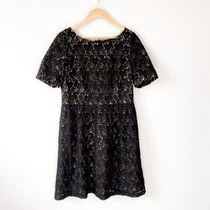 Adriana Papell Black Lace Lined Short Sleeve Dress